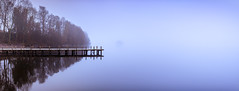 The Jetty Windermere-1 (ianmiddleton1) Tags: windermere jetty mist fog winter water lakewindermere trees woodland