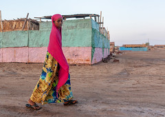 Somali girl passing in the street, Awdal region, Zeila, Somaliland (Eric Lafforgue) Tags: adultonly africa african africanethnicity awdal blackethnicity developingcountry eastafrica fulllength girl hijab horizontal hornofafrica islam lookingatcamera muslim oneperson onepersononly onewomanonly oneyoungwomanonly outdoors portrait soma6416 somali somalia somaliland veil woman women zeila awdalregion