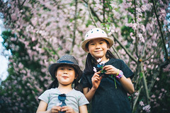 Hanami in Shanghai (MichelleSimonJadaJana) Tags: color sony ilce7rm2 α a7rii a7r ii full frame thirdpartylens manual fullframe voigtlander vme adaptor fe mount lomography x zenit new jupiter 3 1550 l39m 50mm f15 lomo nex vsco documentary lifestyle snaps snapshot portrait childhood children girl girls kid jada jana china 中国 shanghai 上海