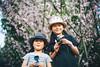 Hanami in Shanghai (MichelleSimonJadaJana) Tags: color sony ilce7rm2 α a7rii a7r ii full frame thirdpartylens manual fullframe voigtlander vme adaptor fe mount lomography x zenit new jupiter 3 1550 l39m 50mm f15 lomo nex vsco documentary lifestyle snaps snapshot portrait childhood children girl girls kid jada jana china 中国 shanghai 上海