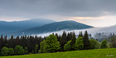 Mist flowing into the valley in Sumava (adp_cz) Tags: e0002 sumava calm clear cloud clouds cold contrast countryside day environment flow forest grass gray green grey high highland hiking hill hills horizontal landscape landscapes meadow melancholic mountain mountains national natural outdoor outdoors panorama park peaceful peak ridge rural scene scenery scenic scenics sky slope top tree trees valley wild wilderness