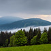 Mist flowing into the valley in Sumava