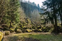 Am Scheibenberg - In the disc of mountain ! (Karabelso) Tags: grã¼n nature trees stone rock landscabe landschaft natur steine felsen scheibenberg orgelpfeifen erzgebirge sachsen germany panasonic lumix gx7