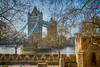 Through the trees. (Tall Guy) Tags: tallguy uk london toweroflondon towerbridge