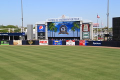 IMG_3245 (Joseph Brent) Tags: yankees spring training tampa florida steinbrenner field aaron judge