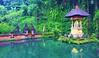 Peace Shrine (dodagp) Tags: indonesia islands bali gunungkawi candis balinesespirituality reflectiveshrines thespiritualsideofbali peacelove