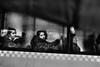 . (mharmanlikli) Tags: passengers strangers rain umbrella bus street bw blackandwhite contrast