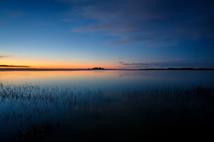 Day to Night (ajecaldwell11) Tags: ankh blue caldwell canterbury d golden island lake lakeellesmere newzealand reeds sunrise tide trees water
