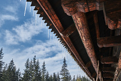 Icicles (peterhorensky) Tags: zuberec zima winter muzeumoravskejdediny orava slovakia icicles