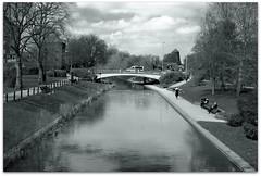 Victoria Park (zweiblumen) Tags: victoriapark stafford staffordshire england uk monochrome river bridge canoneos50d canonef35mmf2 zweiblumen picmonkey riversow