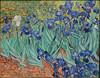 Irises (jdf_92) Tags: jpaulgettymuseum getty museum california losangeles painting irises vincentvangogh vincent vangogh