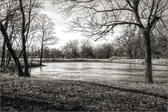 Ice on the Pond (A Anderson Photography, over 2.5 million views) Tags: pond canon bw mono ice frozen