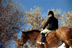 1a-313 (ndpa / s. lundeen, archivist) Tags: nick dewolf nickdewolf photographbynickdewolf 1977 1970s color 35mm film 1a reel1a aspen colorado fall autumn snow november rockymountains foxhunt hunt woodycreek woodycreekhounds roaringforkvalley equestrian horse horseback rider hat blackcoat blackjacket jodhpurs boots glasses sunglasses shades woman female stirrup bluesky roaringforkhunt roaringforkhounds