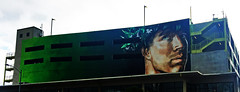 Naupaka II by Kamea Hadar (wiredforlego) Tags: graffiti mural streetart urbanart aerosolart publicart powwowhawaii powwow oahu hawaii honolulu hnl kameahadar