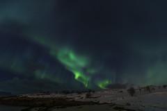 Aurora borealis 10 (José M. Arboleda) Tags: aurora auroraboreal northernlights noche cielo color nube estrella astronomía tromsø noruega canon eos 5d markiv ef1635mmf4lisusm josémarboledac