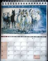Watercolor calendar 2018-05 - DSC03058 (Dona Minúcia) Tags: art painting watercolor calendar2018 animalkingdom arte pintura aquarela reinoanimal calendário model5 modelo5 cavalos hosres