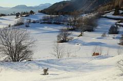 Les blancs pâturages (RarOiseau) Tags: chorges montagne neige hautesalpes hiver v1500