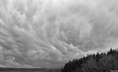 MaMatus dans le ciel d'Alaise (francky25) Tags: mamatus dans le ciel dalaise nuages franchecomté doubs noir et blanc printemps