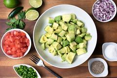 guacamole_2015_202_FI (daynamendozaphotography) Tags: avocado dip guacamole lime redonion sidedish spread tomatoes