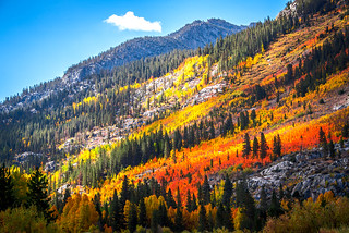 High Sierras Fine Art! High-Res Bishop Creek Epic Autumn Colors Fine Art Landscape Photography! Eastern Sierras Fall Foliage & Autumn Colors Nature Photography! John Muir's Range of Light!
