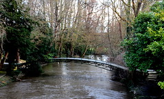 Bray-et-Lû - Passerelle sur l'Epte (Philippe Aubry) Tags: îledefrance valdoise vexin valléedelepte brayetlû rivière epte passerelle