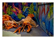 Rehab 2 (7) (Marie Hacene) Tags: rehab2 citéuniversitaire paris exposition streetart artderue fruitsdemer murs