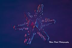 IMG_3235 (nitinpatel2) Tags: snowflakes winter snow macro snowflake crystal nature nitinpatel