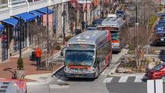WMATA Metrobus 2014 NABI 42 BRT Hybrid #8079 (MW Transit Photos) Tags: wmata metrobus nabi 42 brt hybrid