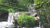 june 2014 lake katherine (timp37) Tags: june 2014 lake katherine illinois palos waterfall