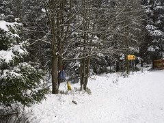 Harz-Oderbrueck_e-m10_1012074035 (Torben*) Tags: olympusm17mmf18 olympusomdem10 rawtherapee harz urlaub vacation winter sonnenberg beutel bags zumrodelhang schnee snow bagshangingfromatree