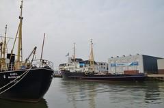 Rigel en Elbe (Hugo Sluimer) Tags: sleepboot sleepboothaven maassluis nederland zuidholland holland nederlands portofrotterdam port haven nlrtm onzehaven
