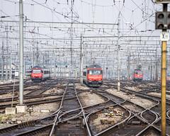 Red@SBB: Always busy (2/3) (jaeschol) Tags: bahnhof eisenbahn elektrischelokomotive europa kontinent lokomotive re420 re460 re460011 re460013 sbb schweiz suisse switzerland transport zürichhb chemindefer railroad railway