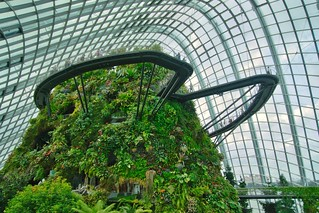 Cloud Forest conservatory in the Gardens by the Bay in Singapore