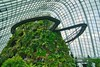 Cloud Forest conservatory in the Gardens by the Bay in Singapore (UweBKK (α 77 on )) Tags: cloud forest conservatory gardensbythebay gardens bay dome glass steel architecture walk plants vegetation green singapore southeast asia sony alpha 77 slt dslr