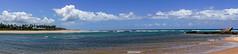 Where the blues are (Thelma Gatuzzo) Tags: brasil bahia arembepe viagem thelmagatuzzo© travel 2018 seascape tropical atlanticocean barradoriojacuípe river coconut trees sky clouds