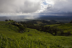 Above the storm (Patrick Dirden) Tags: storm rain cloudburst cloud winter cold green grass grassland slopes mayacamamountains geysersroad geyserville geyservilleca alexandervalley sonomacounty northbay northcoast northerncalifornia california
