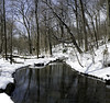 Central Park Ravine (Joe Josephs: 3,166,284 views - thank you) Tags: centralpark landscape nyc newyorkcity travel travelphotography city citypark cityscape outdoors park urbamexploration urban urbanparks snow cold coldweather snowstom ravine