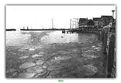 BREAK THE BLACK ICE (régisa) Tags: ice glace volendam noordholland holland hollande netherlands nederland paysbas haven port