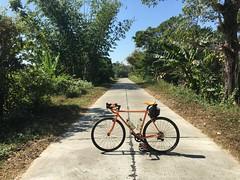 Myanmar, Ayeyarwady Region, Hinthada District, Hinthada Township, Shar Khe Village Tract (Die Welt, wie ich sie vorfand) Tags: myanmar burma bicycle cycling surly crosscheck ayeyarwadyregion ayeyarwady irrawaddy hinthadadistrict hinthadatownship hinthada sharkhe zalun