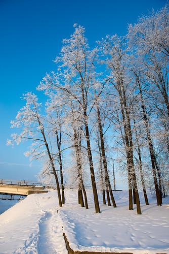 Sunny winter ©  Andrey
