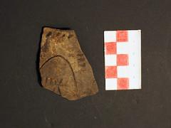 Bandkeramik / linear pottery (Paramedix) Tags: archäologie archaeology germany deutschland badenwürttemberg bandkeramik linearpottery feldbegehung fieldsurvey