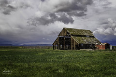 Rustic Barn (NormFox) Tags: barn california clouds country farm field grass landscape mood newman old oldbarn outdoor rural rustic shed sky us unitedstates valley abandoned