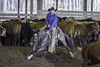 April 25 2015 - Minshall Farm Cutting 1. (dc2photo) Tags: ocha cow cutting equine horse sports western