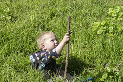 Paul in the grass (quinn.anya) Tags: paul toddler grass stick