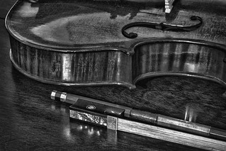 Violin And Bow In Monochrome