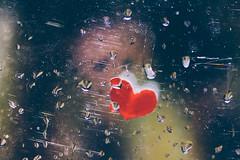 Dream (Inka56) Tags: dream flickrfriday heart raindrops reflection doll window
