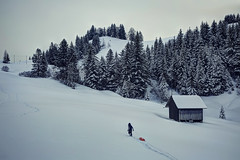 Kid carrying back his sled for the next descent (Davide Seddio) Tags: switzerland landscape winter mountain snow sled sport outdoor schwyz schwyzcanton