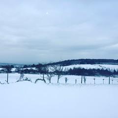 (seustace2003) Tags: baile átha cliath ireland irlanda ierland irlande dublino dublin éire glencullen gleann cuilinn st patricks day zima winter sneachta sneg snijeg neve neige inverno hiver geimhreadh