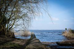 Spaziergang am Zwischenahner Meer