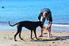 20180408 MARKGRAFENHEIDE (82).jpg (Marco Förster) Tags: dobermann hunde natur markgrafenheide ostsee strand frühling